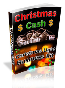 Earn money hanging Christmas Lights